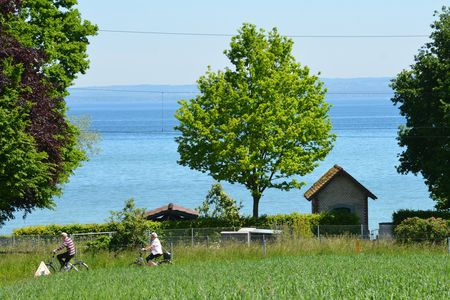 Bodensee-fietsroute in Frasnacht