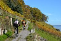 MTB-tocht Bodensee